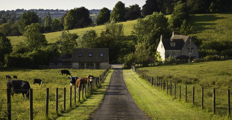 article Are you ready to buy a farm? 5 questions to ask yourself... image