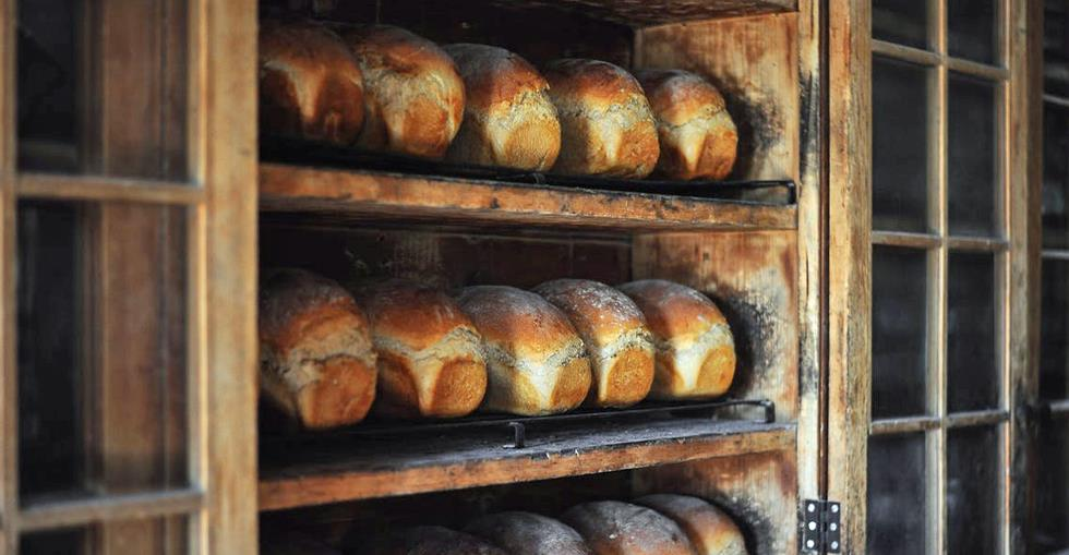article Sector Spotlight: Bakeries  image