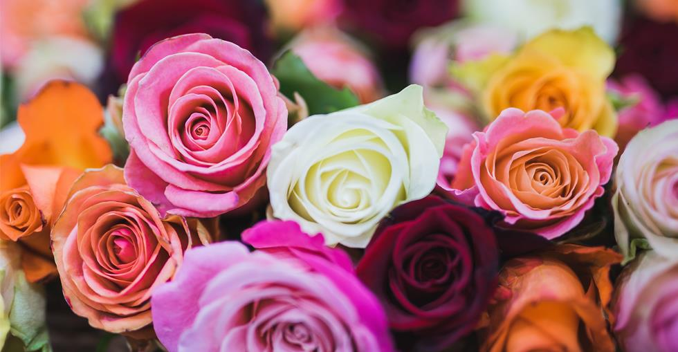 Sector Spotlight: Florists