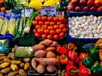 fresh produce wholesaler - 1
