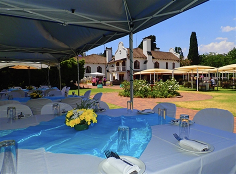profitable popular tea garden - 4