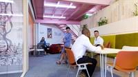 office sharing - 2