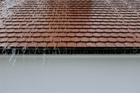 established franchised building maintenance - 1