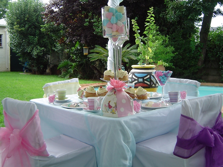established party rentals - 5