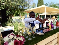 profitable popular tea garden - 2