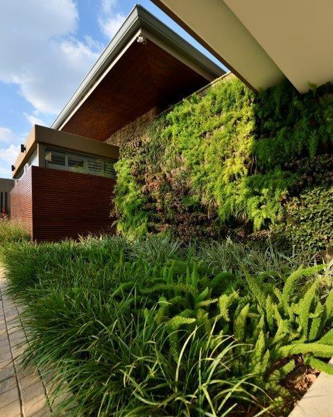 established landscaping garden service - 6