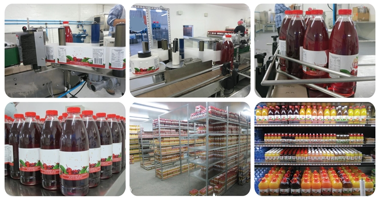 juice bottling factory - 4