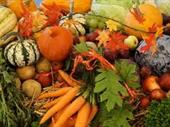 Wholesale Fruit & Veg With Great Potential For Sale