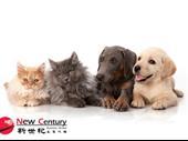 Pet Shop -- Near Doncaster -- #4923444 For Sale